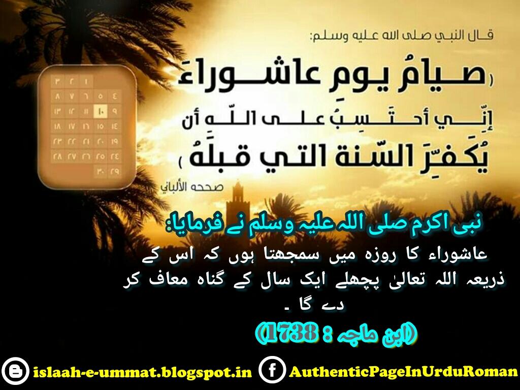 c2i_492016134610.jpg