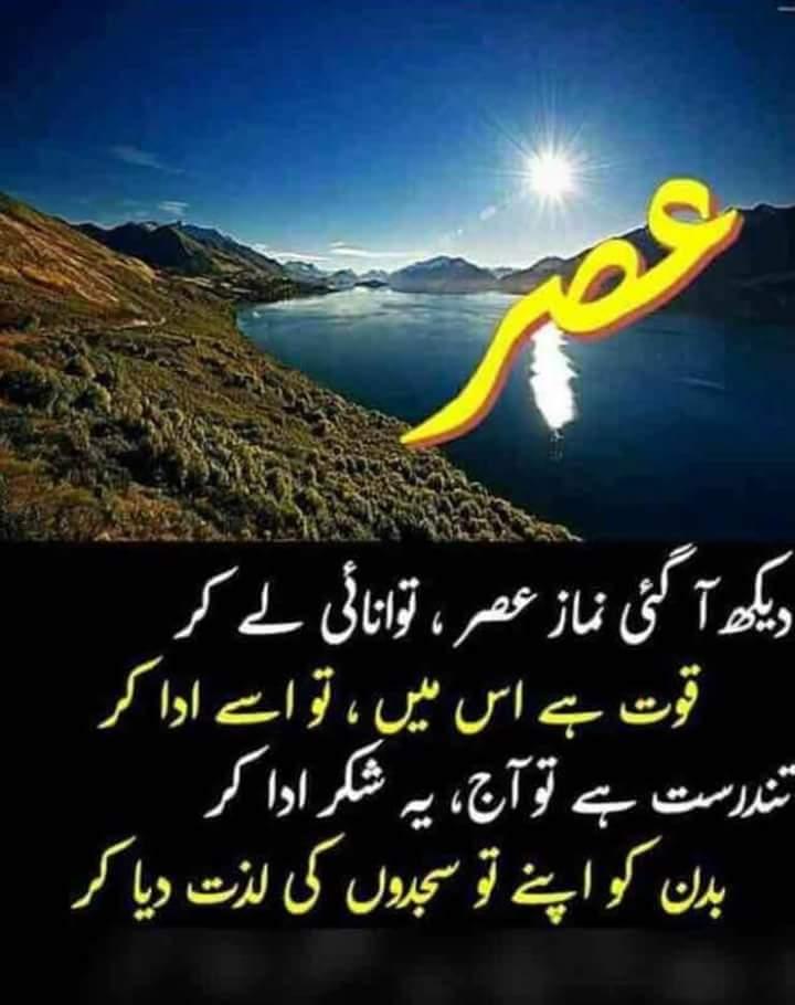 FB_IMG_1511055489319.jpg