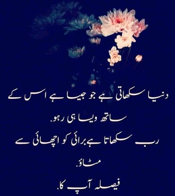FB_IMG_1613671242793.jpg
